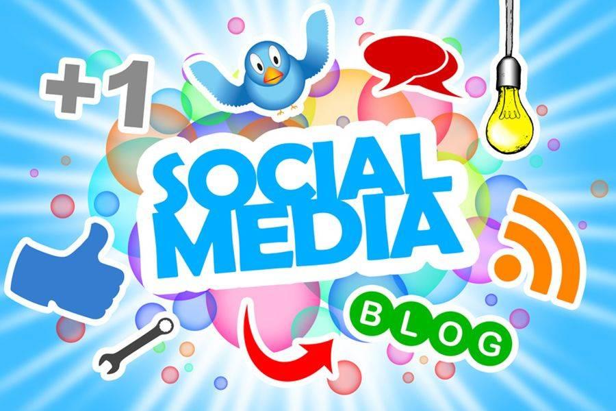 I social network sono la moda del momento; questi ambienti sono è in continuo mutamento e nascono continuamente nuove piattaforme.