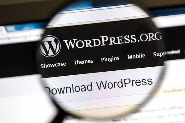 Wordpress e plugin dei browser, le 2 nuove